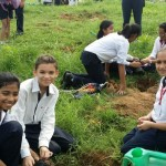 planting trees for Van Mahotsav